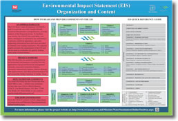 Environmental Impact Statement (EIS) Organization and Content